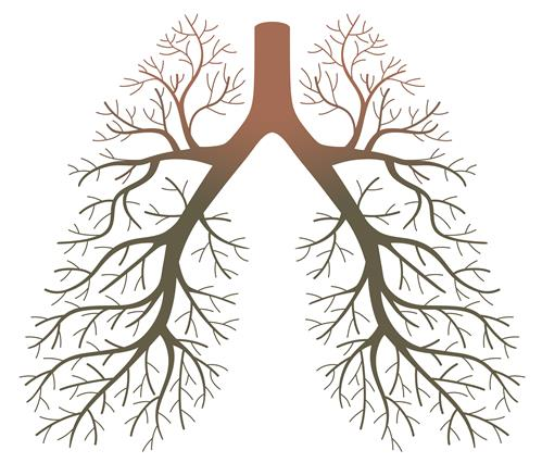 Is Lung Cancer Very Common? - Anton Bilchik, MD