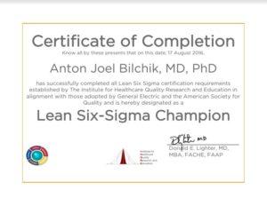 anton bilchik lean 6 sigma certificate